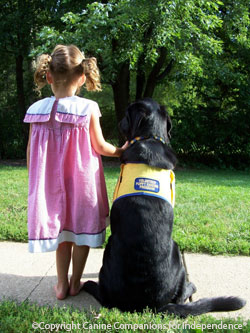 picture of the back of a little girl and a black dog on the sidwalk. dog is sitting and girl is standing holding onto its collar